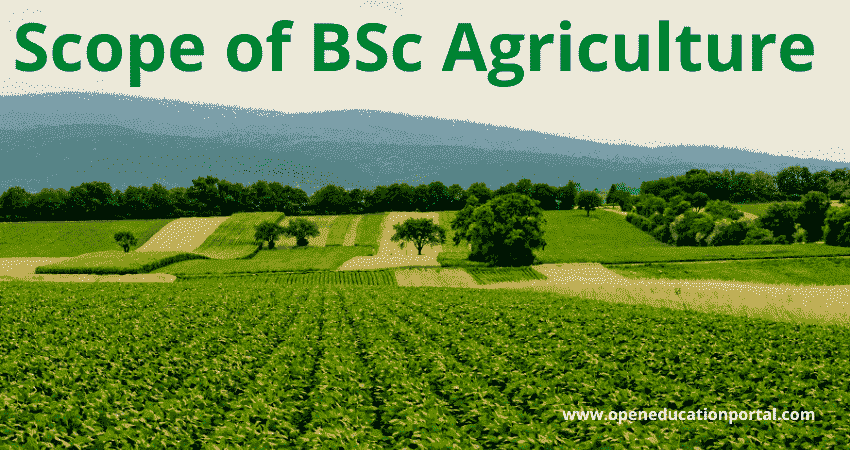 Scope of BSc Agriculture