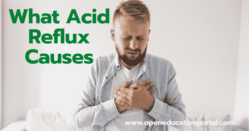 What Acid Reflux Causes