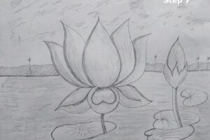 how-to-draw-lotus-flower-7